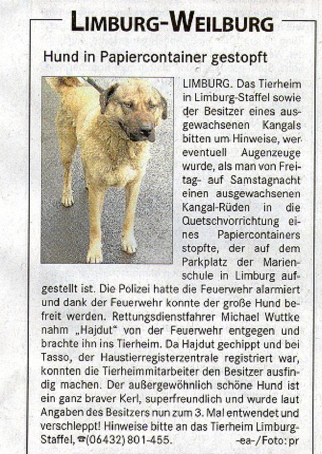 schlangen limburg weilburg